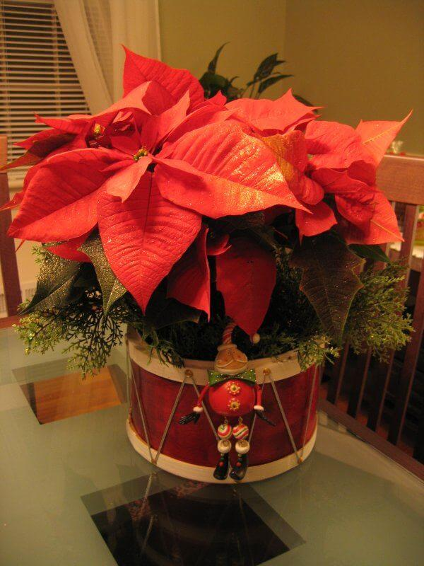 Plant in christmas pot decorated