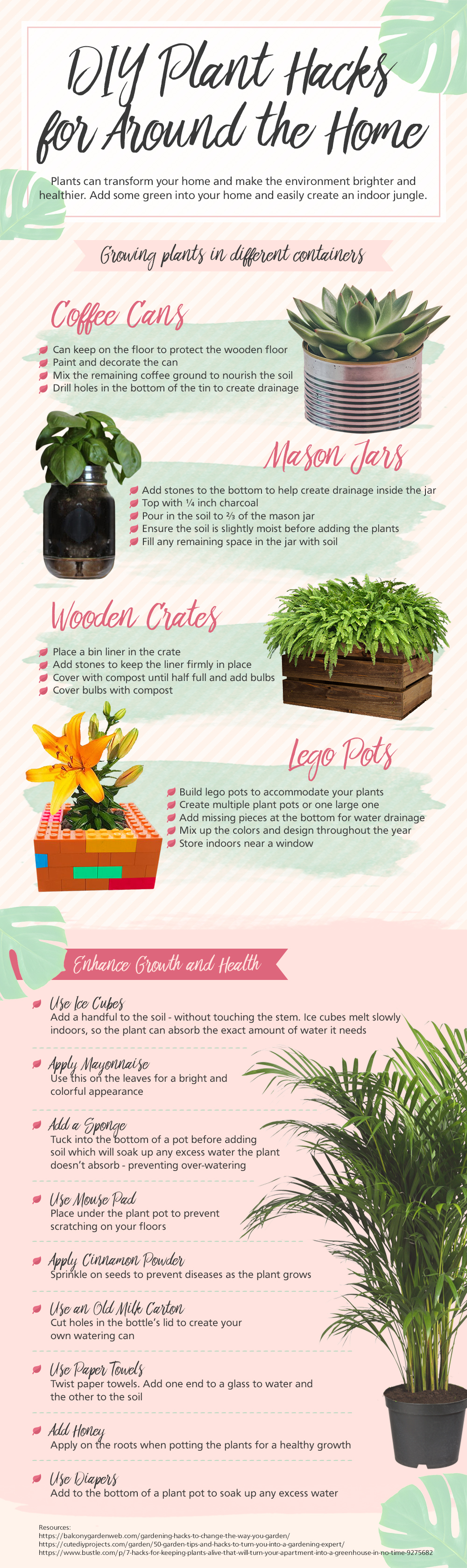 DIY Plant Hacks for Around the Home